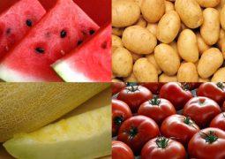 صادرات سیب زمینی، گوجه فرنگی، خربزه و هندوانه به عراق مجاز شد