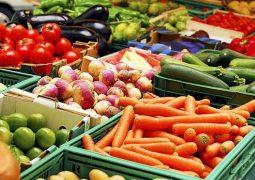 واردات ۷ محصول کشاورزی به عراق ممنوع می شود